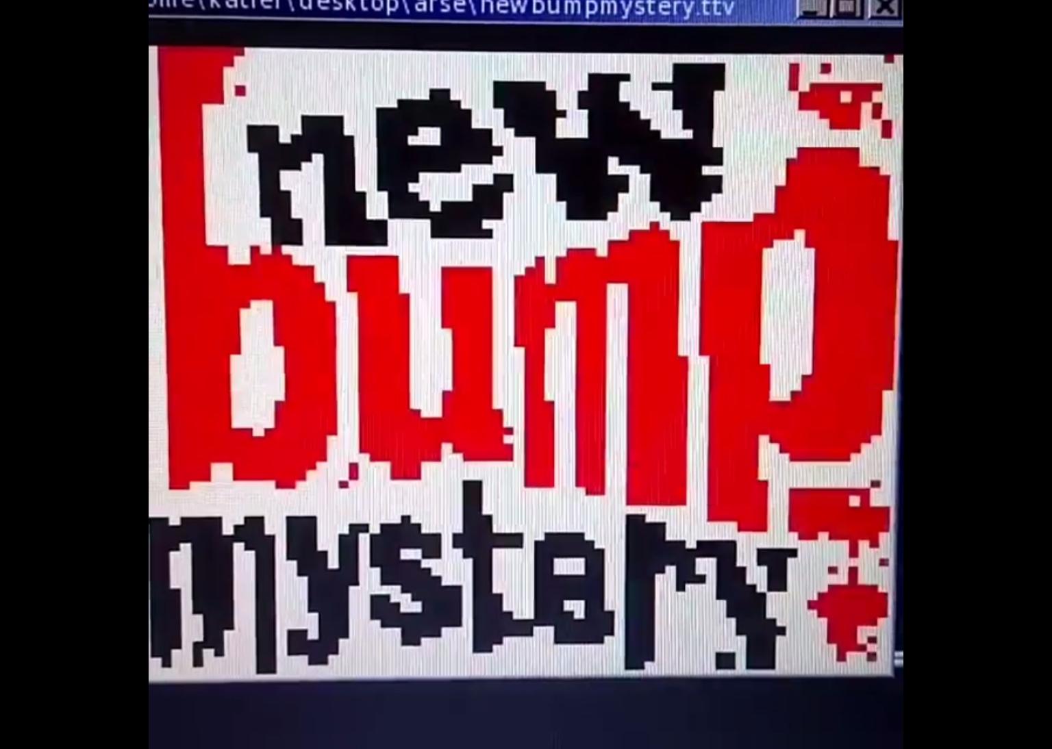 Bump Mystery, Kathrin Gunter